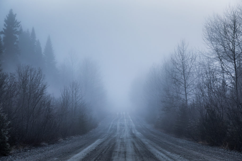 Canva Spooky Fog and Bad Visibility on a Rural Road in Forest